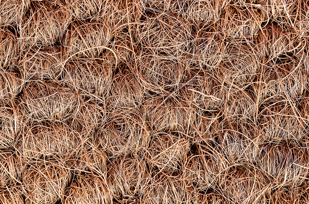Coir Carpet Coir Flooring Coir Rugs Natural Flooring Co
