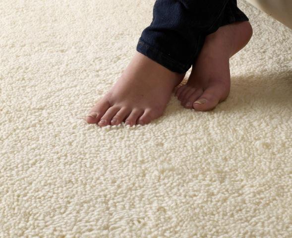 Wool Carpet Wool Carpets Natural Flooring Co