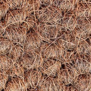 Coir Carpet Sample